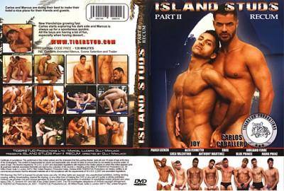 Island Studs Part 2