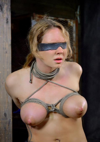 Big breasted sex slave in action