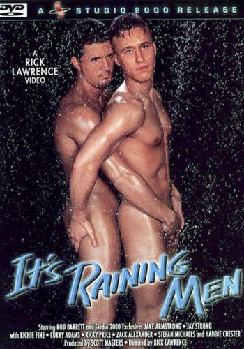 Description Its Raining Men