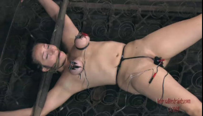 Bondage Pig Part One | Sister Dee