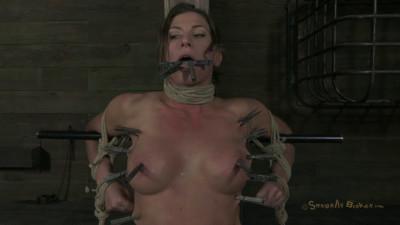 Muscle-Punishment - Ariel X - Matt Williams