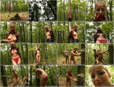 SexualDisgrace - Oct 16, 2014 - Pain Slave Amy is Punished with a Leather Paddle