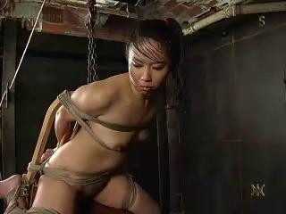 The cord digs into the bitch's skin and keeps her tightly in place for more punishment