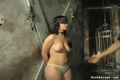 Caned Tits (2013)