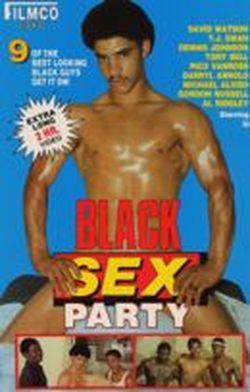 Black Sex Party Vol. 1