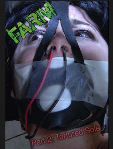 IR  Oct 31, 2014 - Siouxsie Q