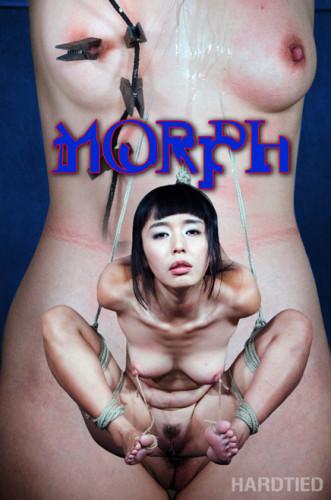 HardTied — Jul 27, 2016 - Morph — Marica Hase
