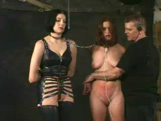 Insex – 411 Punctured (Live Feed August 3, 2001)