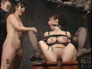 Flogged  (202)
