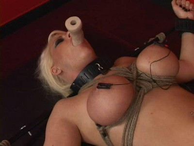Lying On Back - Shockingdidlo, Shocked and Vibed With C ...