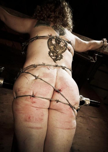 Barbed Wire To The Flesh