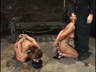 Insex – 120 And 33 (Live Feed From March 20, 2004) (120, 33)