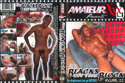 New Blacks On The Block Volume 11 (2010) SiteRip