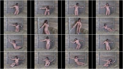 SimplyRestraints Videos 2011-2012, Part 3