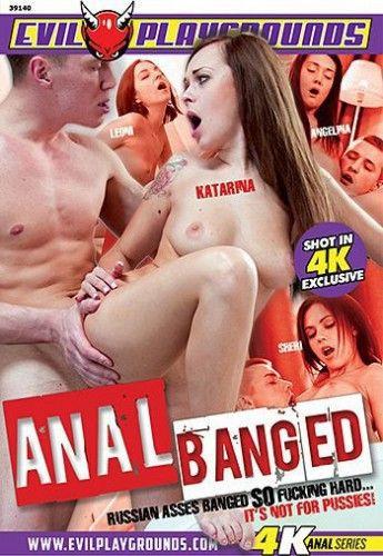 Anal Banged (2016)
