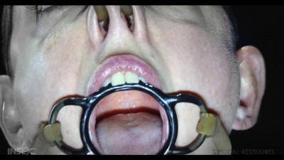 Abigail Dupree High – BDSM, Humiliation, Torture