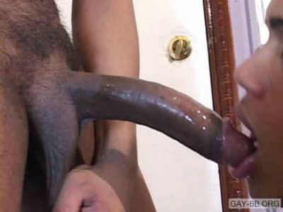 Huge Black Dicks Bareback
