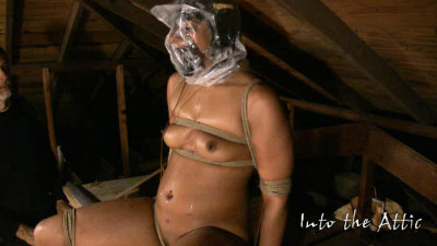 She Wants To Cum (2010)