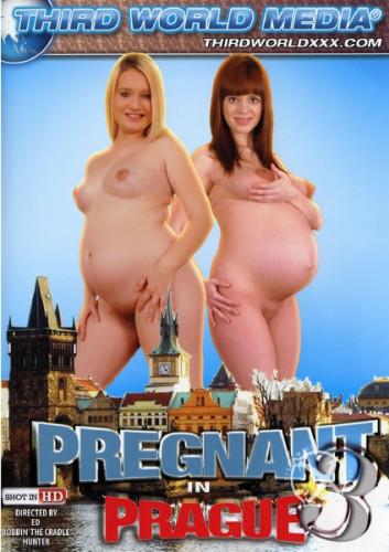 Pregnant In Prague 3 (2014)