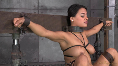 Selma Sins drilled down by two cocks, brutal challenging deepthroat on 10 inch BBC multiple orgasms!