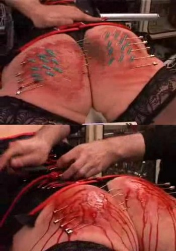 Bloody ass in extreme BDSM.