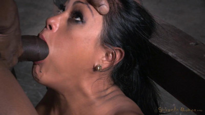 X throat trained on hard cock and vibrated, multiple orgasms!