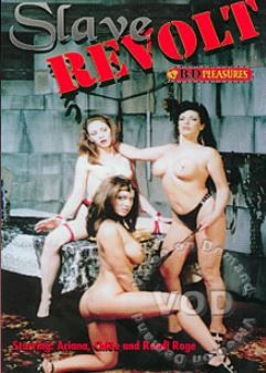 B&D Pleasures - Slave Revolt