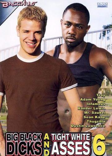 Big Black Dicks: Tight White Asses Vol. 6