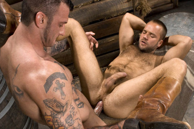 HairyBoyz - David Novak & Ricky Sinz (2010)