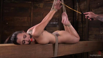 Extreme Bondage And Brutal Domination