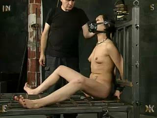 Insex – The First Day Of Xmas (Live Feed From December 24-25, 2002) (731)
