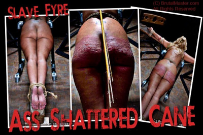 Ass Shattered Cane