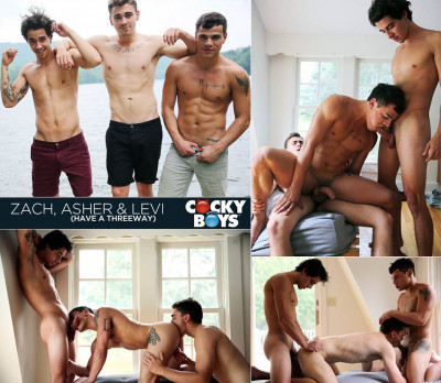 CockyBoys - Asher Hawk, Levi Karter & Zach: Have a Threeway (2013)