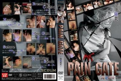 Pain Gate 3