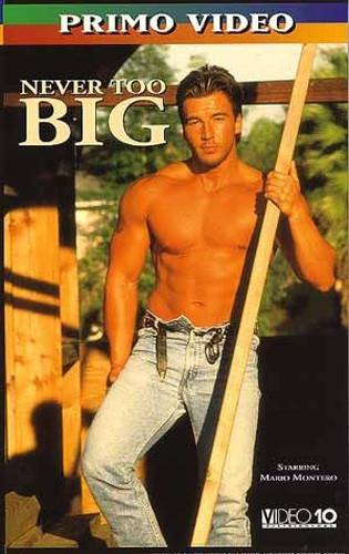 Never Too Big (1995)