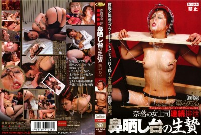 CMC-036 abyss of woman boss continuous excretion nose pillory of sacrifice Aoi Michiru -2009/07/01