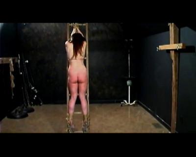 BrutalMaster - Leahnim ladder whipping