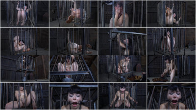 IRestraints – Siouxsie Q – The Farm – Part 1 Checkmate