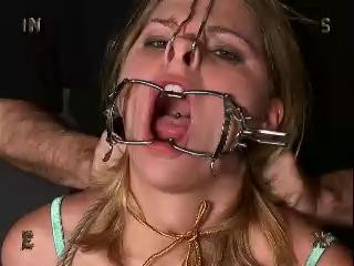 Insex - 822s Live Feed (From September 15)