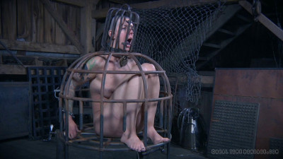 The Extended Feed Of Miss Dupree  4 (12 Sep 2015) Real Time Bondage