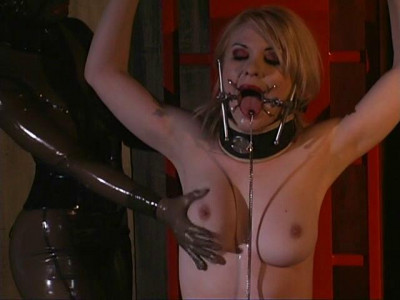 Gwen Media - The Asylum