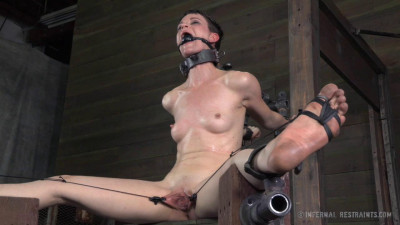 IR — Hazel Hypnotic, Cyd Black — Stuck in Bondage, Again — May 02, 2014
