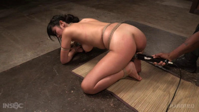 Marica Hase – BDSM, Humiliation, Torture
