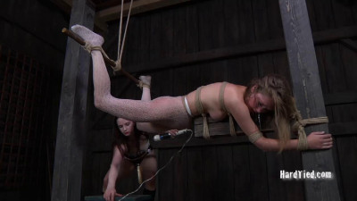 Caught in the Web Part Two - Star , Claire Adams