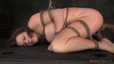 Bossy Bitch Krissy Lynn Jack Hammer (2015)
