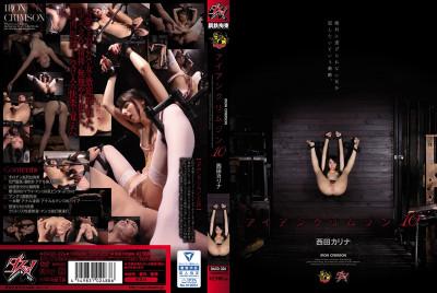 Iron Crimson 10 Nishida Karina (2016)
