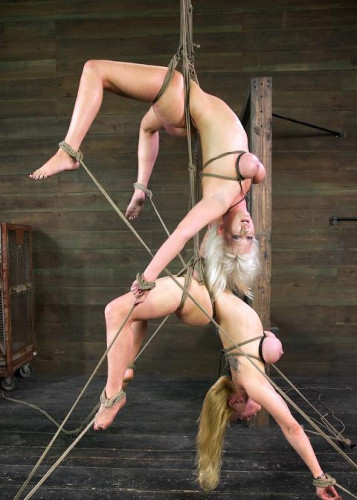 Double BDSM fun