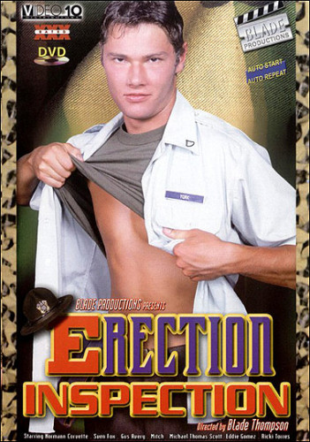 Erection Inspection