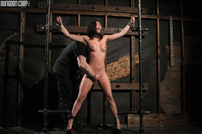 BDSM - The Whip Chamber - Casey Calvert (2011)