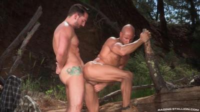 Wild males